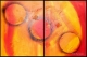 diptico cuadros decorativos 120x80 codigo 1982 vendido