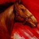 "CUADROS MODERNOS ONLINE ""WAR HORSE II"""